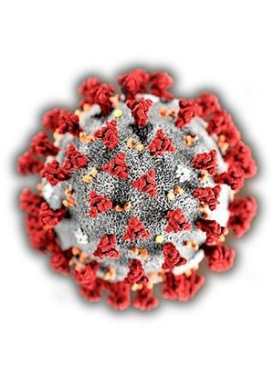 Pas de Keleier pour cause de coronavirus